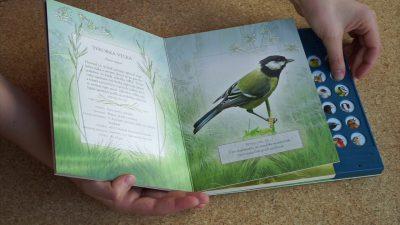 Poznávanie vtáčích hlasov v prírode. Projekt Letná knižná školička