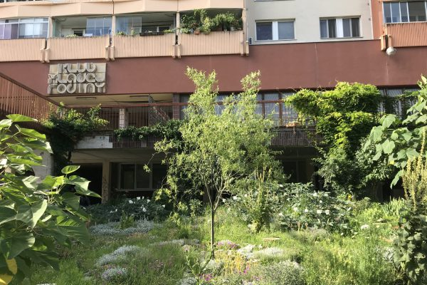 Záber terasy pri pobočkách Vavilovova 24-26